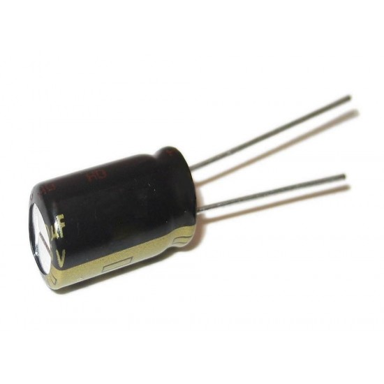 22µF (Micro Farad) Electrolytic Capacitor
