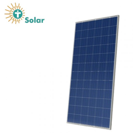 Tesla 300 Watt Poly Solar Panel Commercial Grade (2 Year Warranty)